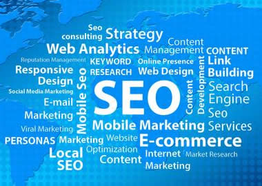 SEO | Search Engine Optimization | Website Search Results